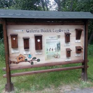 Drewniana tablica ogłoszeniowa